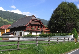 Alpenrose vanaf de weg