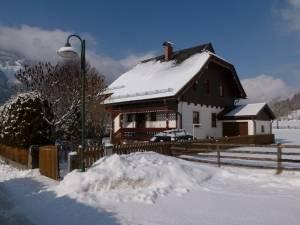 Alpenrose in de winter